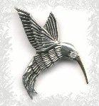 Hummingbird (kolibri)